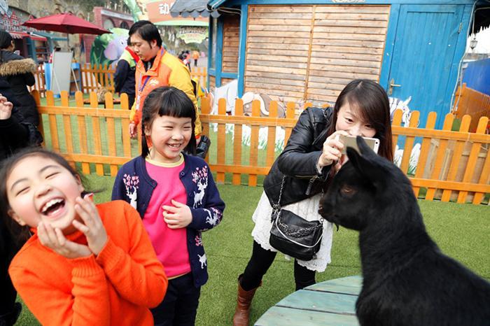 乐和乐都建西部最大动物幼儿园
